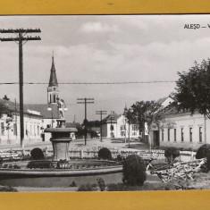 ALESD BIHOR 1963