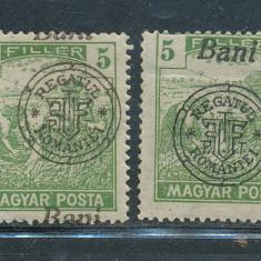 RFL 1919 ROMANIA Oradea Seceratori 5 Bani 2 erori cu sursarj sau tipar deplasat - Timbre Romania, Nestampilat