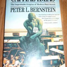 CAPITAL IDEAS PETER L BERNSTEIN