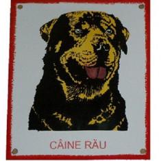 PLACA CAINE RAU ROTTWEILER