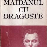 MAIDANUL CU DRAGOSTE de GEORGE MIHAIL ZAMFIRESCU - Roman, Anul publicarii: 1986