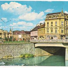 Carte postala(ilustrata)-ORADEA -vedere - Carte Postala Crisana dupa 1918, Necirculata, Printata