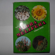 Ion V.Carnu-Flora melifera/{apicultura-stuparit, stuparitul, albine} - Carti Agronomie