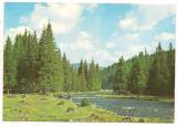 Carte postala(ilustrata)-ALBA -Valea Frumoasei