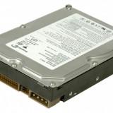 hard disk 40 gb ide