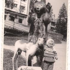 Foto-PREDEAL 1980