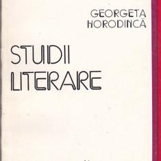 GEORGETA HORODINCA - STUDII LITERARE - Studiu literar