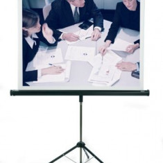 Ecran videoproiector 180/180 cm