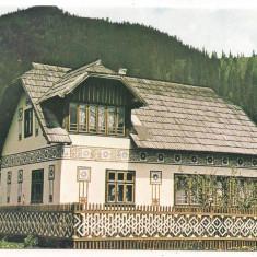 Carte postala(Bucovina)-SUCEAVA -Ciocanesti - Carte Postala Moldova dupa 1918, Necirculata, Printata