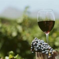 Vin rosu de tara, regiunea Dobrogea,natural 100%,, Romania