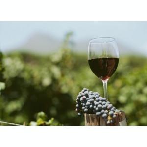 Vin rosu de tara, regiunea Dobrogea,natural 100%,