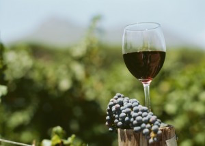 Vin rosu de tara, regiunea Dobrogea,natural 100%, foto