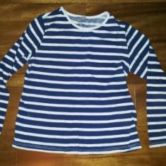 Bluza copii 5-6 ani din bumbac de la Zara Kids, ca noua, 118 cm, Culoare: Albastru