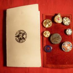 Colectie Insigne Militare Yugoslavia in Carnet Original - Insigna