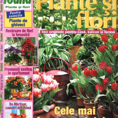 PLANTE SI FLORI DIN MARTIE 2002 - Revista casa