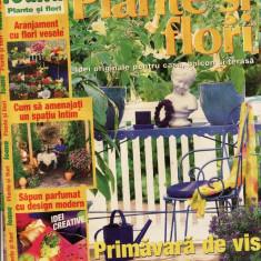 PLANTE SI FLORI NR 4/2002 - Revista casa