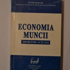 Economia Muncii - probleme actuale - Petre Burloiu - Carte Resurse umane