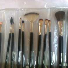 Set  12 Pensule Profesionale Machiaj  make-up