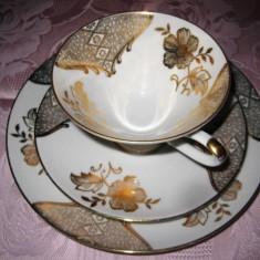 Set Bavaria Winterling Rosiau vechi de cafea din portelan cu flori  auriu  .