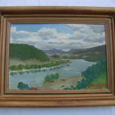 Superba pictura realizata pe panza, semnata si datata 1951 - Tablou autor neidentificat