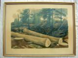 Litografie veche sau pastel artist suedez consacrat Lars Jorgen Zetterquist