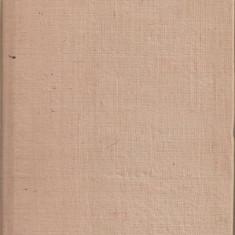 (C1989) SINT UN NATARAU DE SHERWOOD ANDERSON, EDITURA PENTRU LITERATURA UNIVERSALA, BUCURESTI, 1966, TRADUCERE DE ION CARAION - Roman