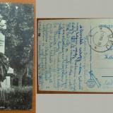 CP Kecskemet statuie Katona Jozsef 1939, Europa, Circulata, Fotografie