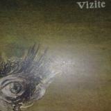 Vizite - Mircea Albulescu - Roman