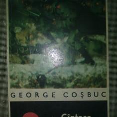 George Cosbuc - Cintece de vitejie