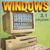 WINDOWS 3.1*UTILIZARE