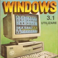 WINDOWS 3.1*UTILIZARE - Carte Microsoft Office
