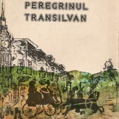 I. Codru Dragusanu - Peregrinul transilvan - Carte de calatorie