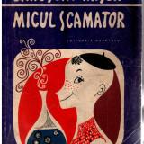 JAROSLAV HASEK - MICUL SCAMATOR - Roman