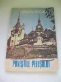 POVESTILE PLESULUI CARMEN SYLVA, Carmen Sylva