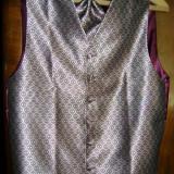 Vesta + cravata superba de gala