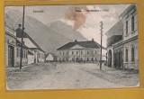 ZARNESTI PIATA 1913