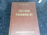 Cultura porumbului - Gh. Ionescu Sisesti - 1955, Alta editura