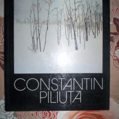 Constantin Piliuta ( album de pictura ) - Album Arta