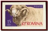 Romania 1962 - Eseu neadoptat Animale de rasa 15 bani, macheta desen original