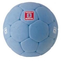 Minge handbal School