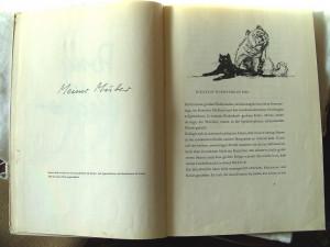 PONY PEDRO, Erwin Strittmatter, 1958. Carte veche in limba germana, pt. copii