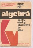(C3629) FISE DE ALGEBRA PENTRU ELEVI SI ABSOLVENTI DE LICEE DE N. GHIRCOIASIU SI M. IASINSCHI, EDITURA DACIA. 1976
