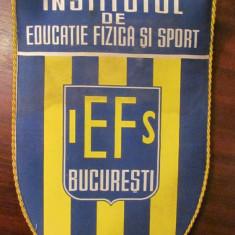 """PVM - Fanion frumos """"Institutul de Educatie Fizica si Sport / IEFS Bucuresti"""""""