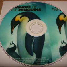 MARSUL PINGUINILOR ( March of the Penguins ) - DVD / 2005 - Voce: Morgan Freeman - Film documentare animal planet, Engleza