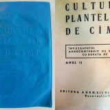 CULTURA PLANTELOR DE CAMP