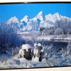 TABLOU / POSTER INRAMAT 'IARNA' / Winter - 50cm/40cm