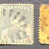 LOT BARBADOS- FOSTA COLONIE ENGLEZA