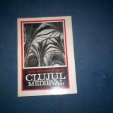 CLUJUL MEDIEVAL STEFAN PASCU - Istorie