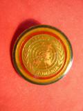Insigna ATSRNU - Romania - ONU
