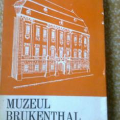 Muzeul brukenthal ghid carte ilustrata foto muzeu arta - Album Muzee